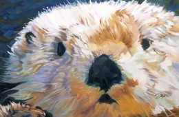 Otter Innocence 2