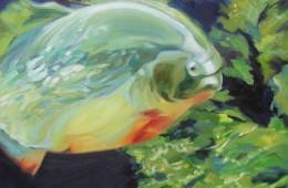 Black-Potted Piranha